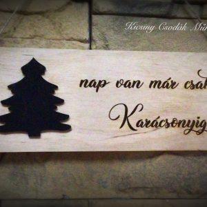 … nap van már csak Karácsonyig!🎄